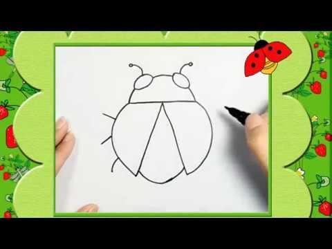 Bé tập vẽ bọ cánh cam