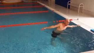 Плавание .Урок- 2.  Кроль, спина и брасс.