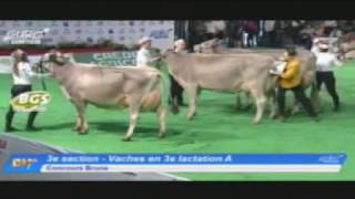 EG2017 - Brune - Vaches en 3e lactation A