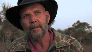 They Live in Trees (skunk ape documentary)