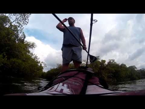 when fishing goes wrong on paddleboard