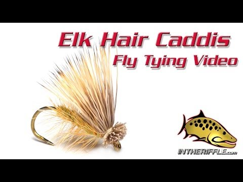 Elk Hair Caddis Fly Tying Video Instructions and Directions