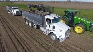 SWL Farms │ Sugar Beet Harvest 2017