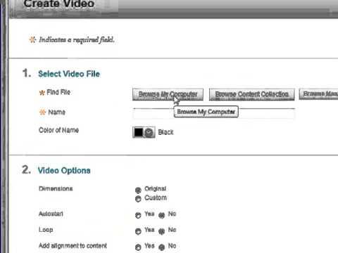 Adding a Video File to Blackboard Learn