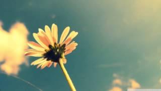 Florian Paetzold - Hello Spring (Original)