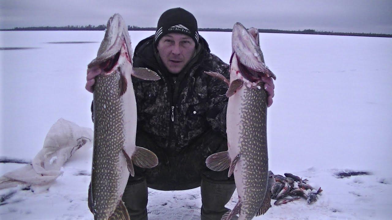 Зимнее рыболовное путешествие по озёрам Сибири видео