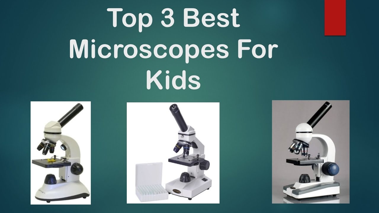 Best Microscope For Kids - Buyers Guide to the Top 3 Best Microscopes For Kids and Teens (Under $100) | Shopswell