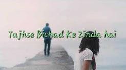 Tujhse Bichhad kar Zinda Hai