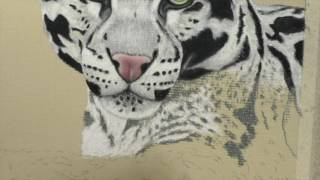 How to Draw Leopard Spots | Pastel Pencils