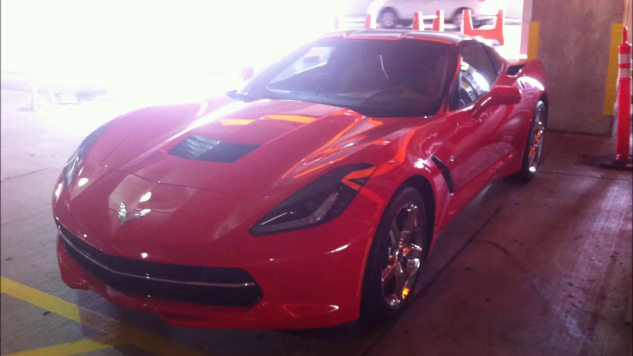 Miami Lamborghini and other sports cars