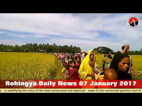 Rohingya Daily News 07 January 2017