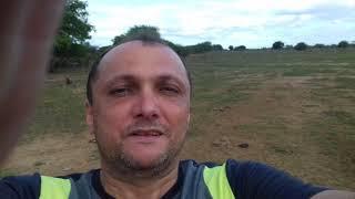 Dessalinização de água em pleno sertão pernambucano, obrigado Bolsonaro, nós nordestinos agradecemos thumbnail