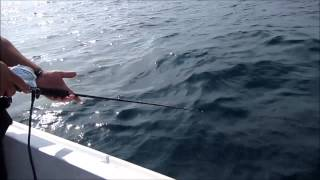Pescando com WD 40