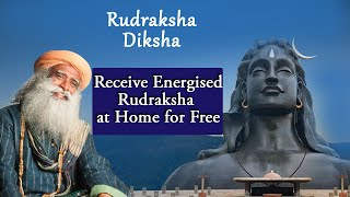 This Special Seed Protects You From Negative Energies | Benefits of Wearing Rudhraksha  | ISHA