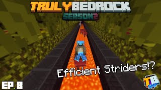 How To Use Striders Efficiently! | TrulyBedrock Season 2 [#8] | Minecraft Bedrock Edition SMP Server