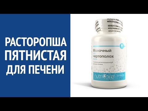 Лекарство для печени, очистка печени в домашних условиях