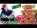 Sinhala New Songs 2019 || Dj Nonstop || Best Song Collection Mp3
