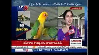Beauty Of Birds | Mini Zoo Started By a Family In Hyderabad : TV5 News