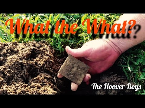 Gold, Platinum, Silver, Coins & Relics Metal Detecting | What the What?