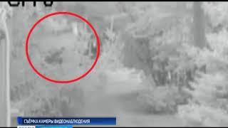 камера видеонаблюдения зафиксировала, как смелый бузулучанин спас женщину от грабителя