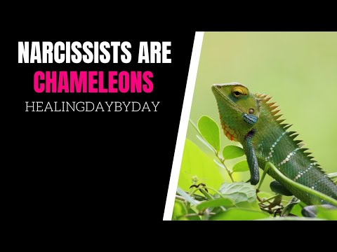 The  Chameleon Effect: The Narcissist's Many Identities