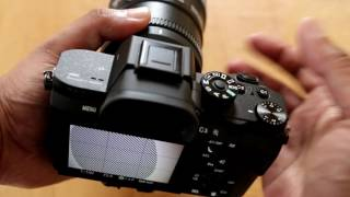 Sony A7RII + Sigma MC-11 Test with Tamron 70-200mm, Canon 100mm L, Samyang 24mm Lenses
