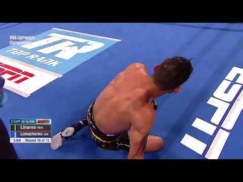 Lomachenko the new WBA lightweight world champion  LinaresLoma