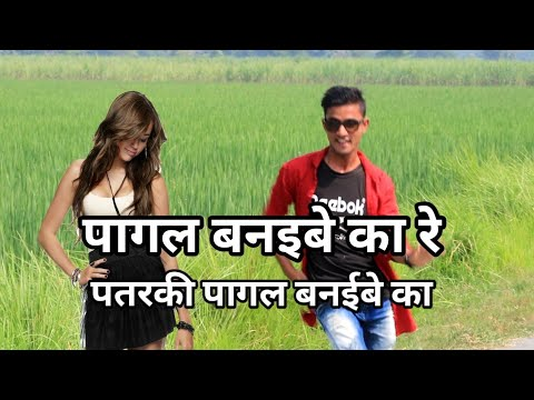 Pagal Banaibe Ka Re Patarki Pagal Banibe Ka ( Kheshari Lal Yadev |cover Dance| Shiwam  |