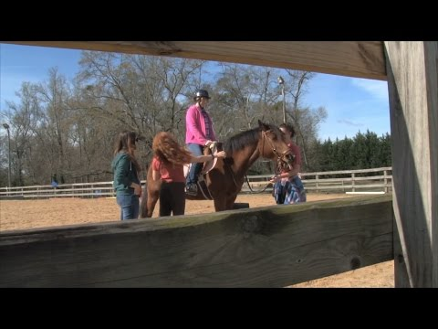 Equine Facility Provides Comfort & Therapy To Kids With Autism