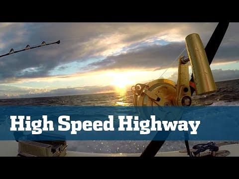 Wahoo; High Speed Wahoo Fishing