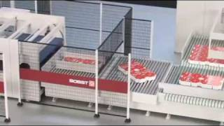 Bobst Masterline in scale 1:20