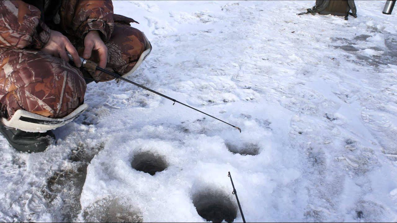 Зимняя рыбалка в Пензе, Колдаис