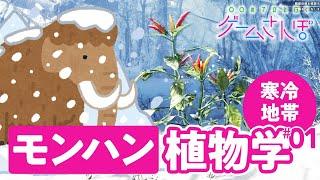 【ゲームさんぽ/MHW:IB ①】植物学者とモンハンの世界で生態系調査! 「渡りの凍て地」にトウガラシが多い理由