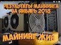 Результаты майнинга за январь на R9 290 и R9 270x МАЙНИНГ ЖИВОЙ!!!