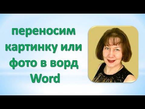 Как перенести картинку или фото в ворд Word
