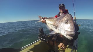Trolling for Monster Pink Snapper from a Kayak.