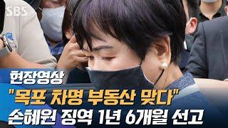'목포 부동산 차명' 손혜원 징역 1년 …