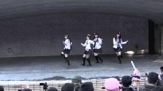 2011/11/23 AM11:20~ 札幌大通公園「寒くなんかないぞ!秋の萌えぽよラ...