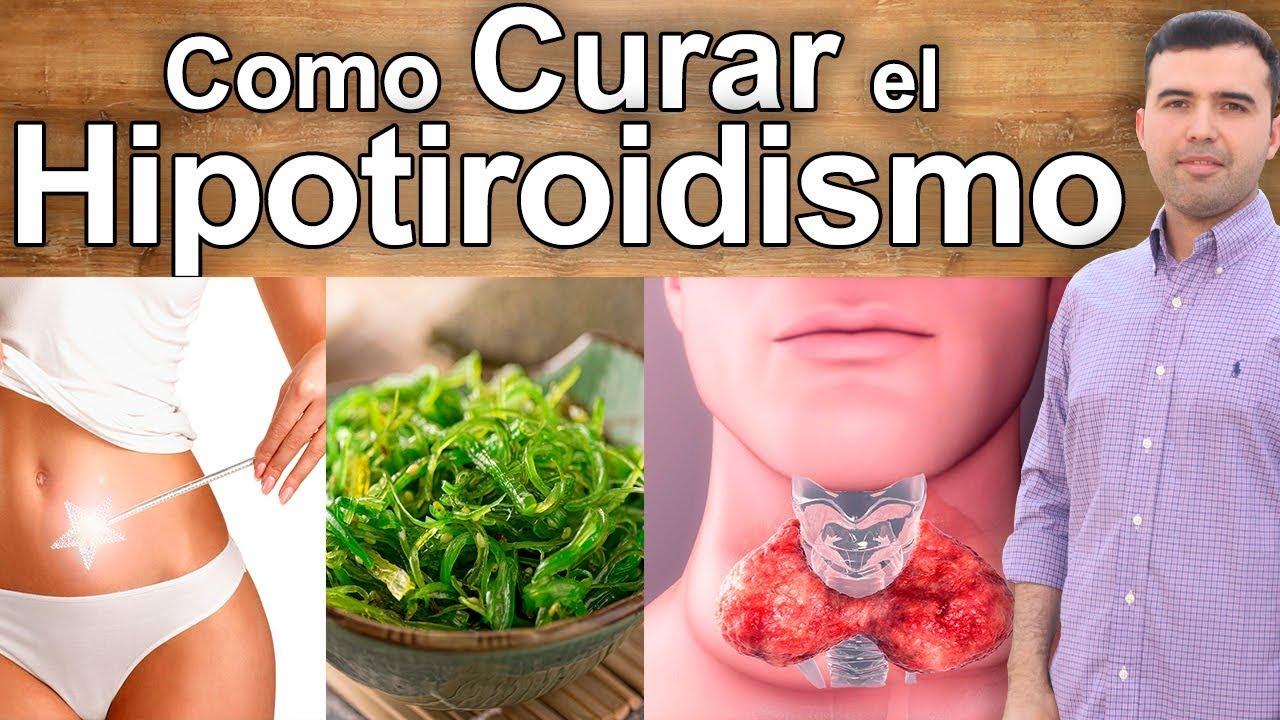 hipotiroidismo que no se puede comer