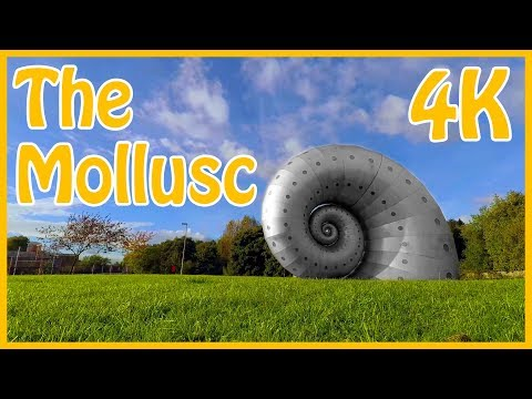 """Have You Seen The Mollusc in Hasland Chesterfield? AKA """"The Chesterfield Snail"""""""