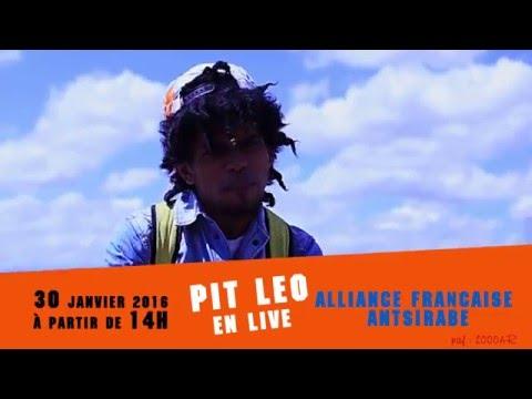 spot pit leo