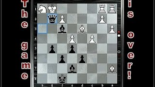 The Best Neil chess H-14!..  25