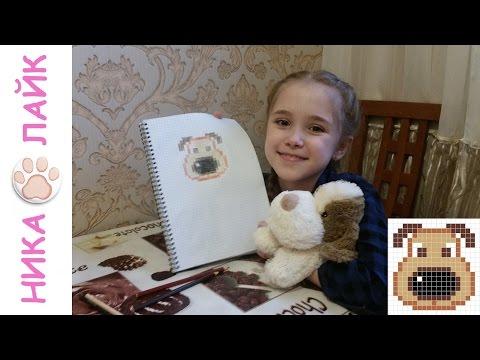 Как нарисовать по клеточкам собаку для начинающих девочек в тетради пошагово