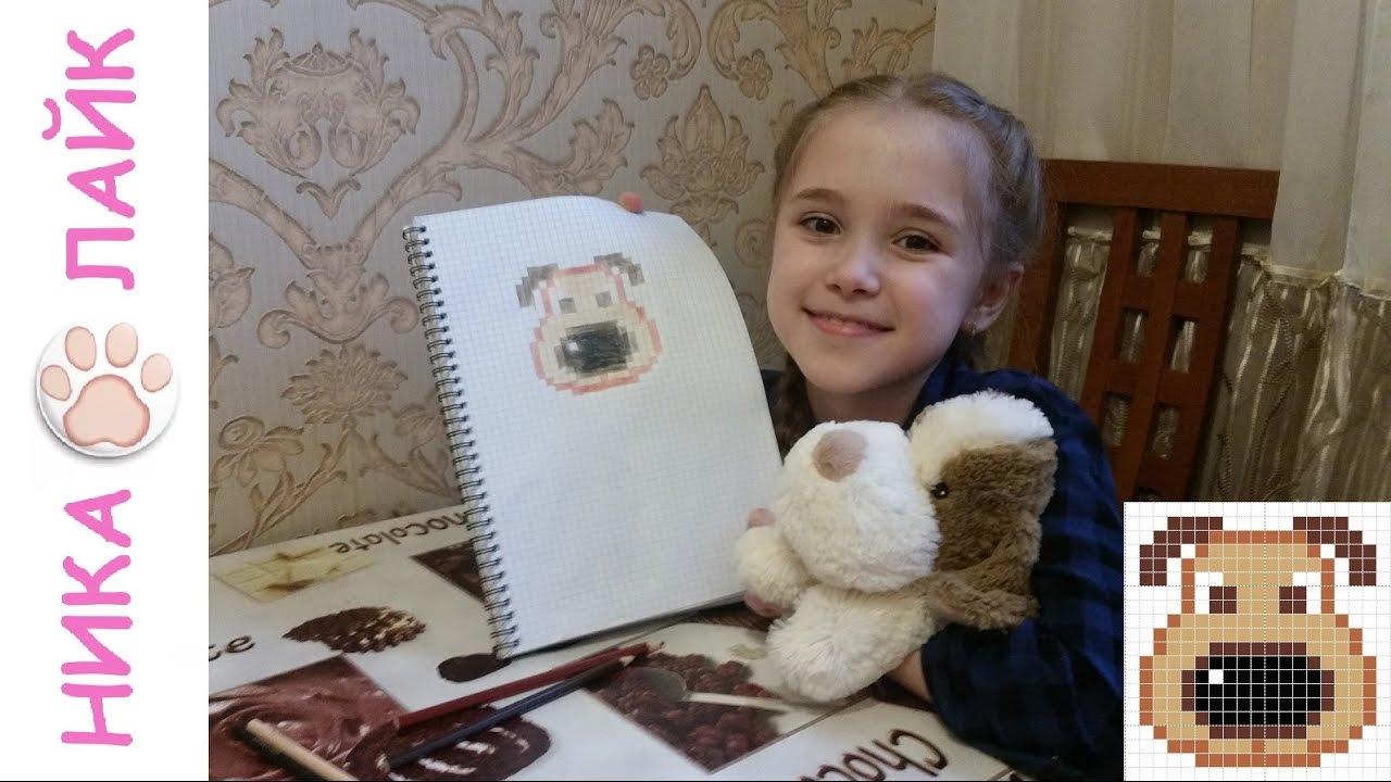 Как нарисовать собаку картинки для начинающих 17