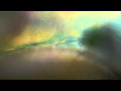 Sekuoia - Waves