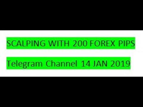 Scalping forex telegram