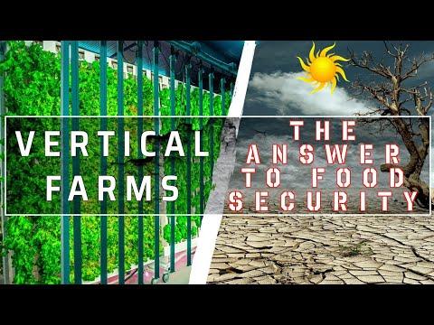Foundation Farms Video