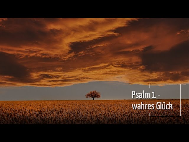 Gottesdienst | Psalm 1 - wahres Glück |  Andy Baltaks