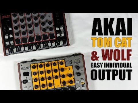 Akai rhythm WOLF / tom CAT EASY INDIVIDUAL OUTPUT / SORTIES SÉPARÉES FACILE