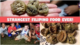 HUNTING, COOKING, AND EATING THE STRANGEST FOOD IN THE PHILIPPINES (Scary Alien Filipino Food)